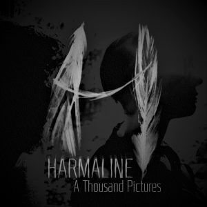 Harmaline || A Thousand Pictures || cover